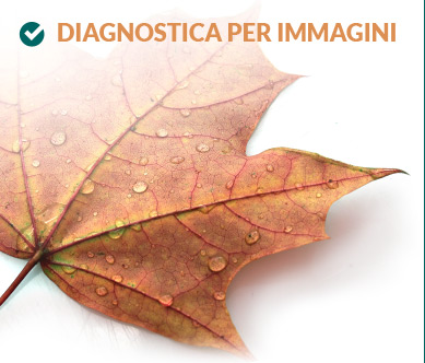 Diagnostica per immagini - Network
